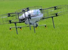 看日本农民用智慧农业技术都做了什么