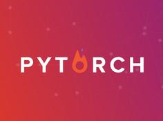 PyTorch经验指南:技巧与陷阱