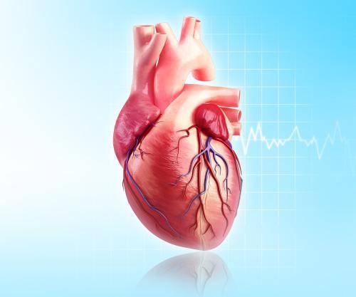 心脏病患者的福音:AI辅助急救电话接听员掌握患者一手情况