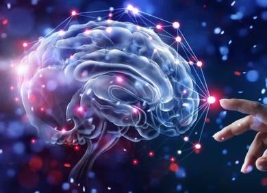 机器学习时代,神经科学家如何阅读和解码人类的思想