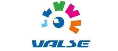 「见微知著」- 细粒度视觉检索特辑【VALSE Webinar】Panel实录