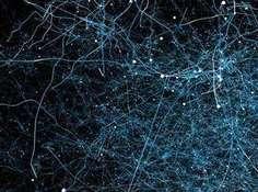 基于长短期记忆循环神经网络的对话文本主题分割