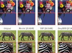 比无所不能的DIP更强大的图像恢复方法:DeepRED