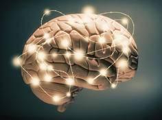 还原论方法无法解开意识之谜,理解意识需要整体考虑
