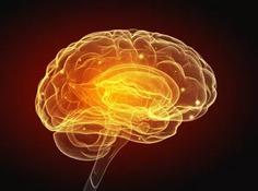《自然》子刊:同类最大规模研究!AI可识别超过400个精神分裂症相关基因
