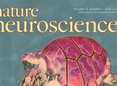 Nature计算和理论神经科学特刊:剖析机器学习推动下的神经科学进展