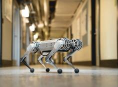 首个会翻跟斗的MIT四足机器人,将造10台借予其他院校