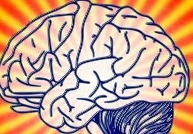 Neuron:不再「一刀切」,AI识别功能脑网络与认知的关系