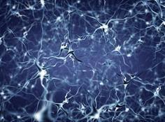 深度学习与神经网络全局概览:核心技术的发展历程