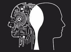 卷积神经网络十五问:CNN与生物视觉系统的研究探索
