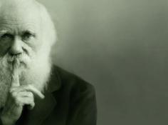 理性强化学习遭遇瓶颈,进化算法会成为接替者吗?