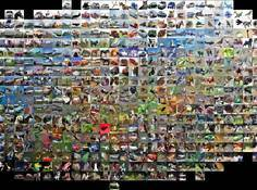 GitHub新项目:轻松使用多种预训练卷积网络抽取图像特征