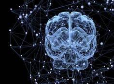 脑机接口新突破:实现迄今为止最快的打字速度