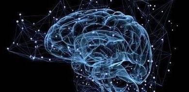 AI改变患者护理方式,脑部影像新锐公司募资1800万美元
