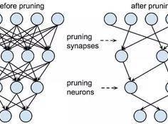 当前深度神经网络模型压缩和加速都有哪些方法?