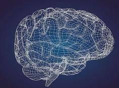 神经形态计算与神经网络硬件最全调查:从研究全貌到未来前景