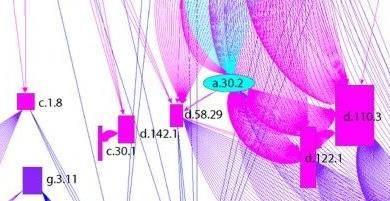蛋白质结构域的组织网络演变
