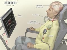 世界首例成功的人类脑机接口实验:让全身瘫痪病人通过思想进行交流