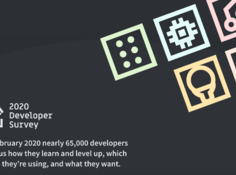 Java收入不再最低,Python被TypeScript击败,2020全球开发者调查报告出炉