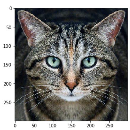 经得住考验的「假图片」:用TensorFlow为神经网络生成对抗样本