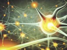 运算更快,耗电更少!香港科技大学首创多层全光学人工神经网络