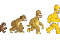 研学社 · 入门组 | 第四期:进化是大自然的学习算法