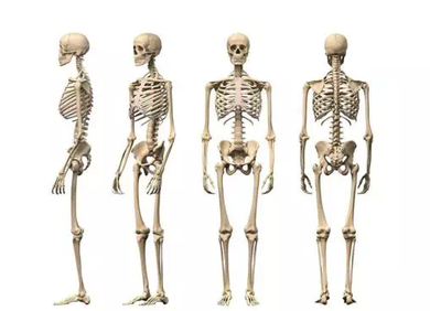 图卷积在基于骨架的动作识别中的应用