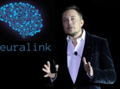 历时两年,马斯克终发布「脑后插管」黑科技,革新脑机接口