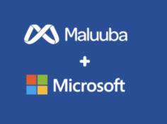 微软收购NLP明星公司Maluuba,Bengio将成为微软顾问