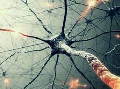 理解神经网络中的目标函数