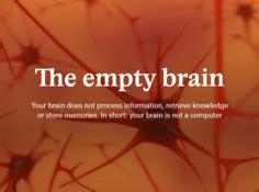 大脑不是计算机,也不负责处理信息