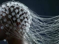 脑机接口新突破:首次实现双向通信