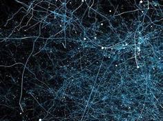OpenAI详解进化策略方法:可替代强化学习