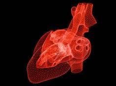 Science:自学习式人工智能可协助预测心脏病发作