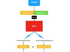 谷歌终于开源BERT代码:3 亿参数量,机器之心全面解读