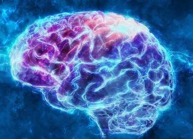 新型大脑启发式学习方法来了,可帮助人工神经网络节省内存和能量