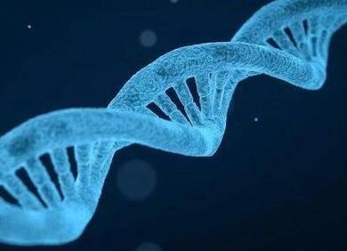 """AI是基因检测发展的加速器?细聊""""AI+基因检测""""的正确打开方式"""