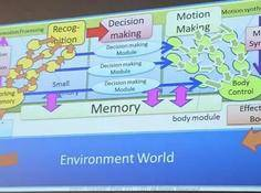 Youichiro Miyake:数字游戏世界中角色的觉醒与意识