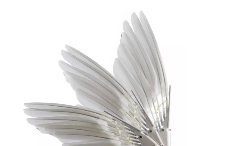 真·鲁班:斯坦福学者造出带羽毛翅膀的「机器鸽」,登上Science及其子刊
