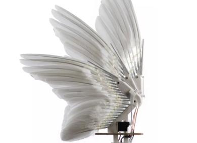 真·鲁班:斯坦福学者制出带羽毛党羽的「板滞鸽」,登上Science及其子刊