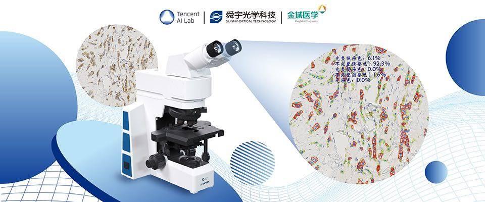 图片包含 显微镜, 物体, 游戏机  描述已自动生成